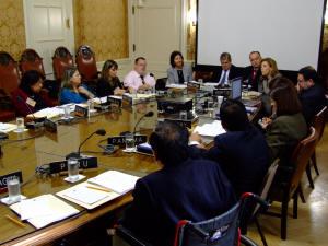 Presentación de informes alternativos ante el CEDDIS – OEA