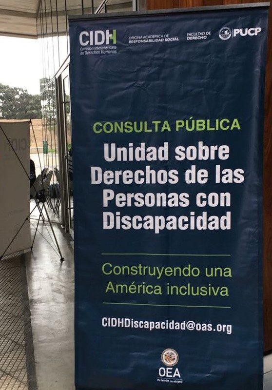 La RREI participa de la consulta pública de la Unidad sobre los Derechos de las Personas con Discapacidad de la CIDH