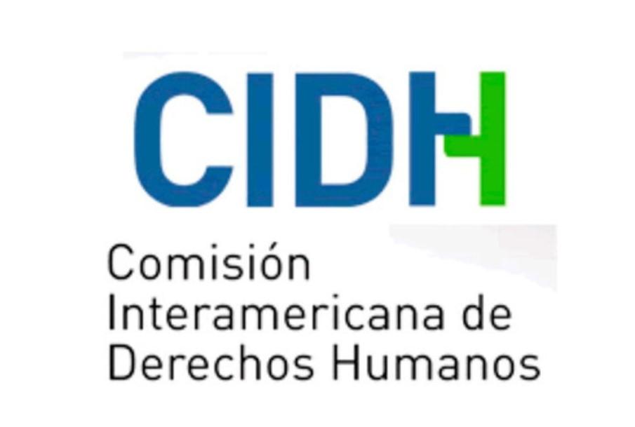 Solicitamos a la CIDH una audiencia temática sobre la situación educativa de las personas con discapacidad en América Latina