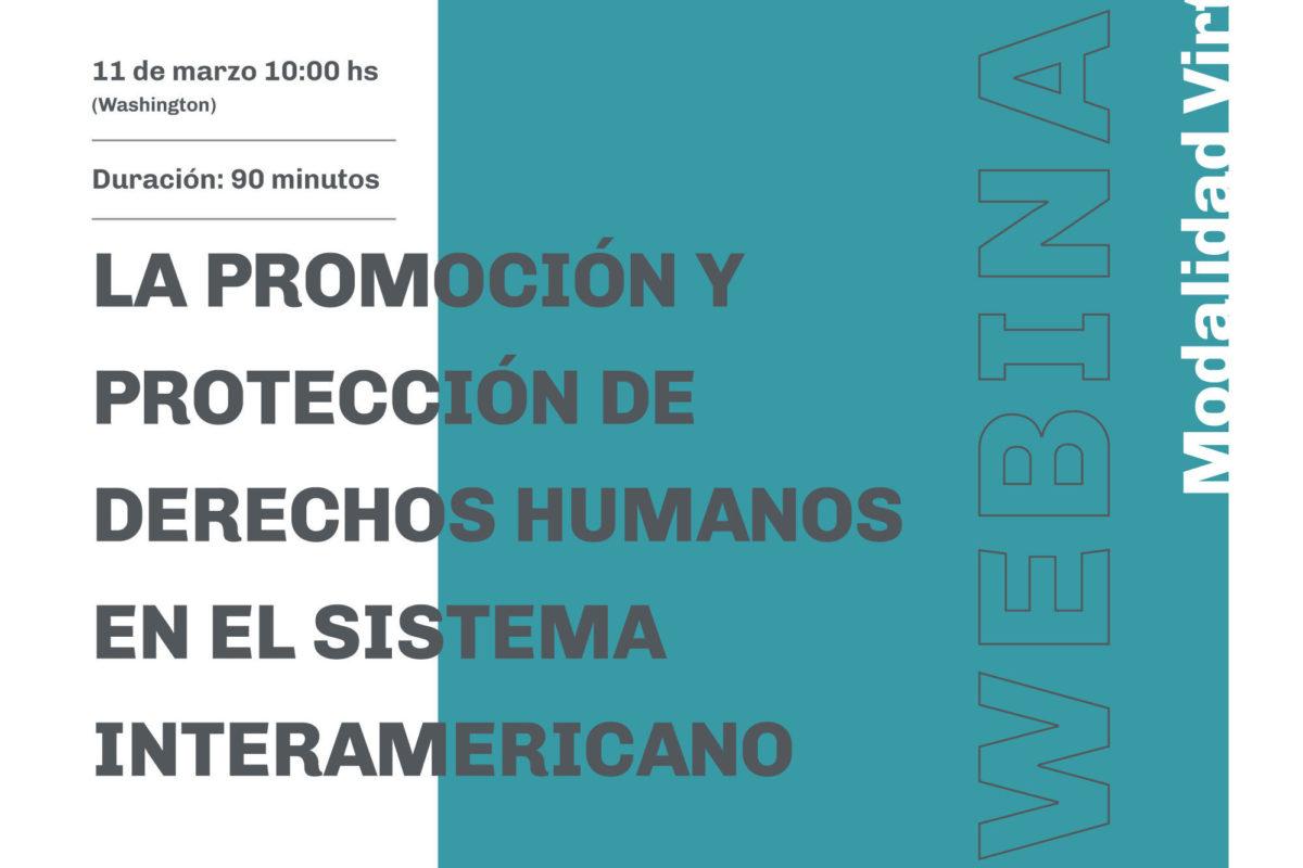 Seminario en línea: La promoción y protección de derechos humanos en el sistema interamericano